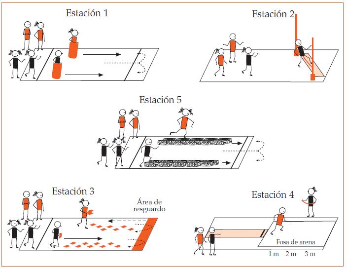Circuito De Accion Motriz : EducaciÓn fisica