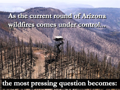 HEALING THE EFFECTS OF WILDFIRE