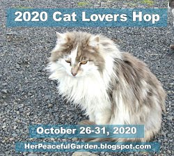 2020 Cat Lovers Hop