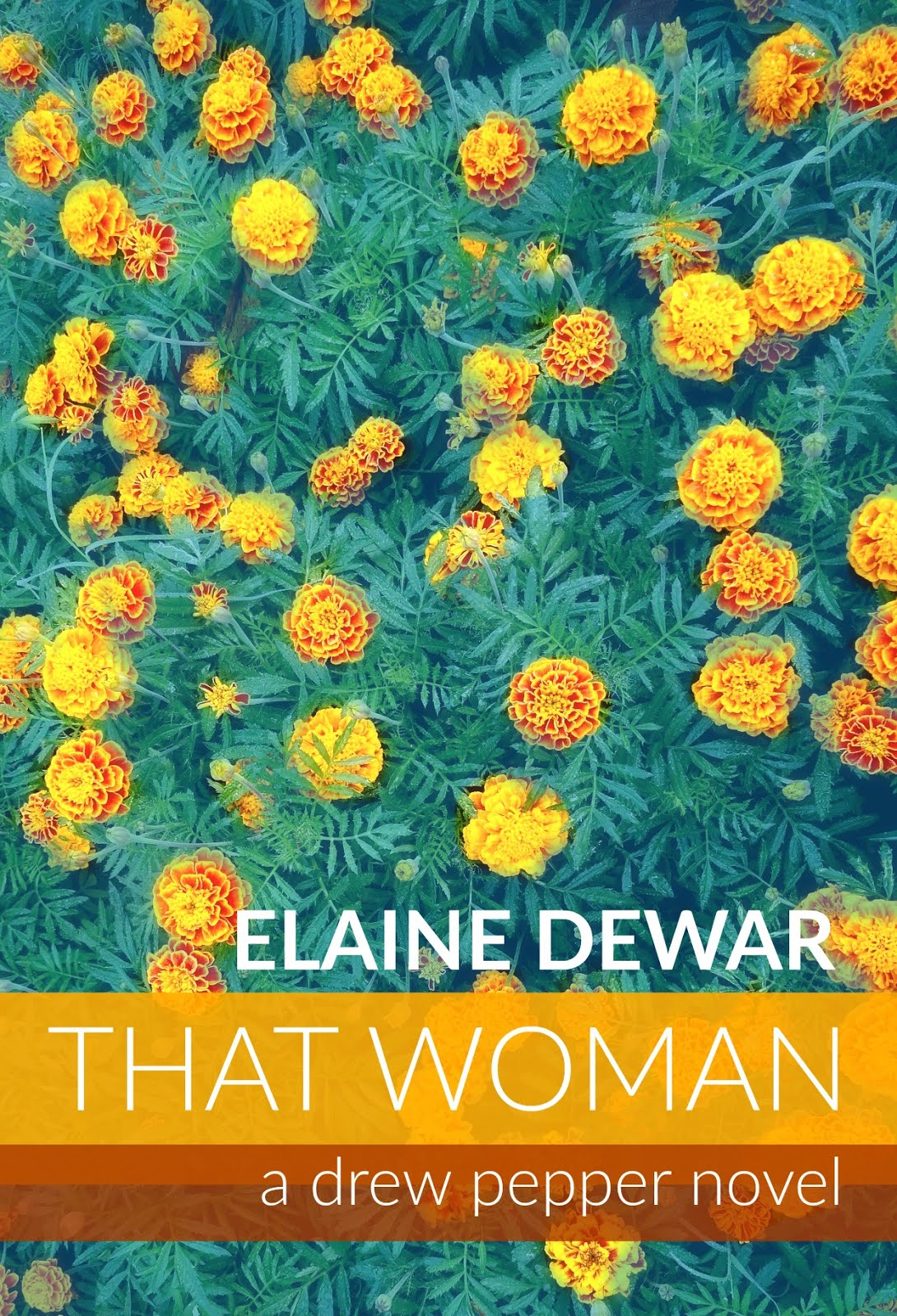 FREE NOVEL: THAT WOMAN