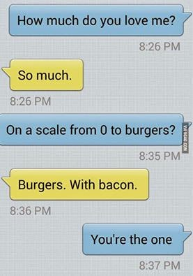 How Much Do You Love Me So Much On A Scale From 0 To Burgers
