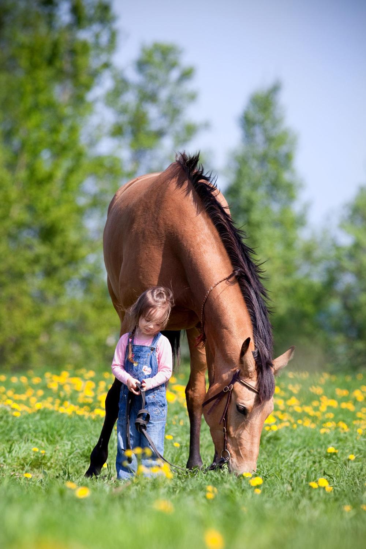 niña con su caballo en los verdes prados (imagenes facebook