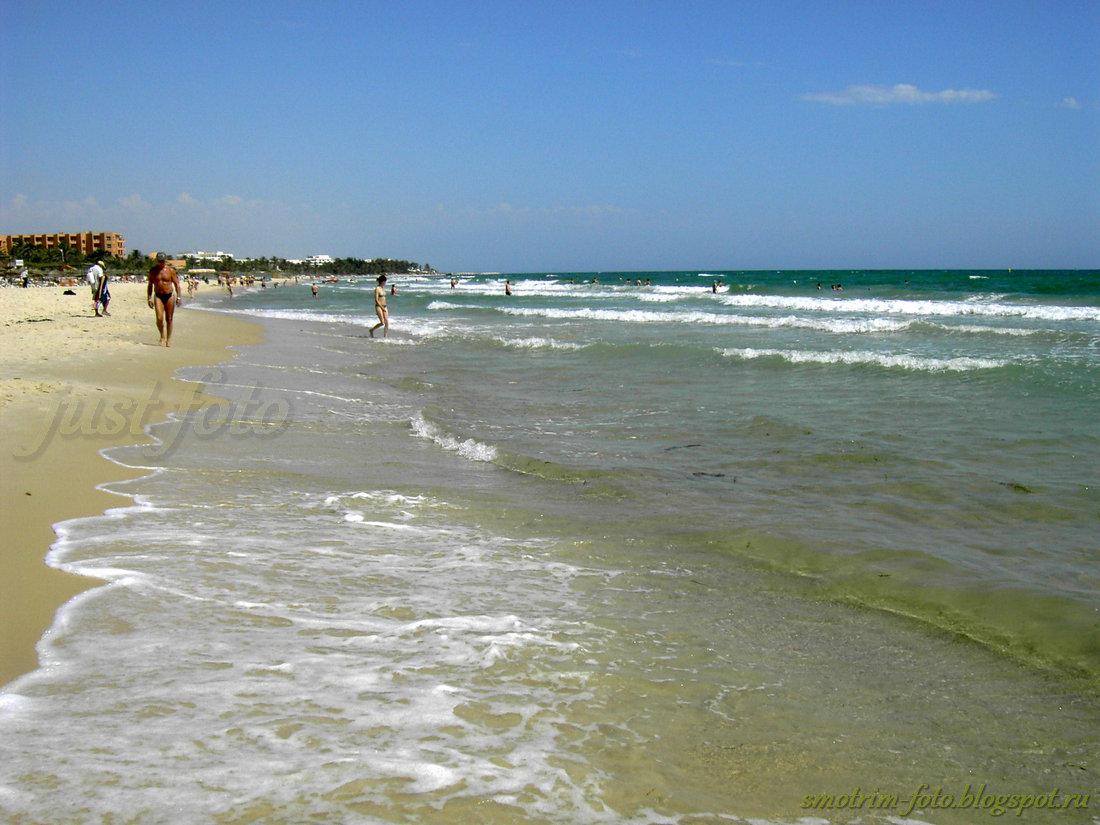 Тунис погода в мае июне