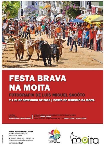 """""""Festa Brava na Moita""""- Exposição Fotográfica de Luís Miguel Sacôto"""