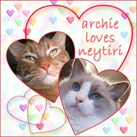 NEYTIRI&#39;S MANCAT ARCHIE