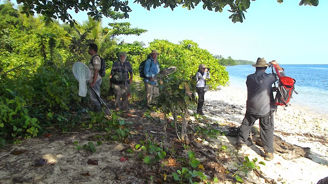 Voyage entomologie au nord de Moluque, Group de Daniel MILAN fevrier 2015