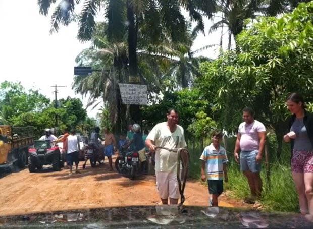 Cobra acabou sendo morta pelos moradores (Foto: Reginaldo Duarte/Divulgação)