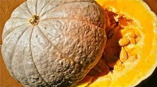 Zucca gialla e semini