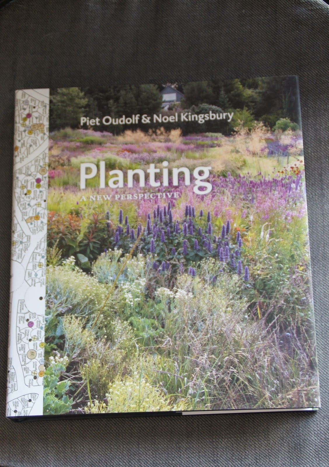 A new book to add to my  Labelled Dryopteris