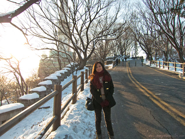 N Seoul Tower in Mt. Namsan