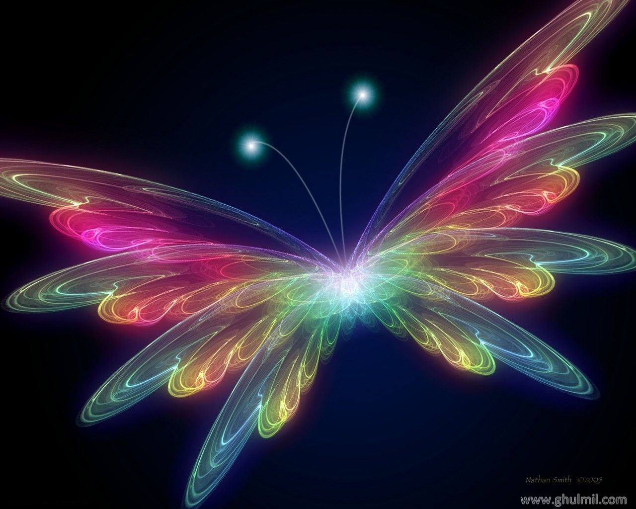 Butterfly Wallpaper Background Wallpapers Butterflies For Desktop