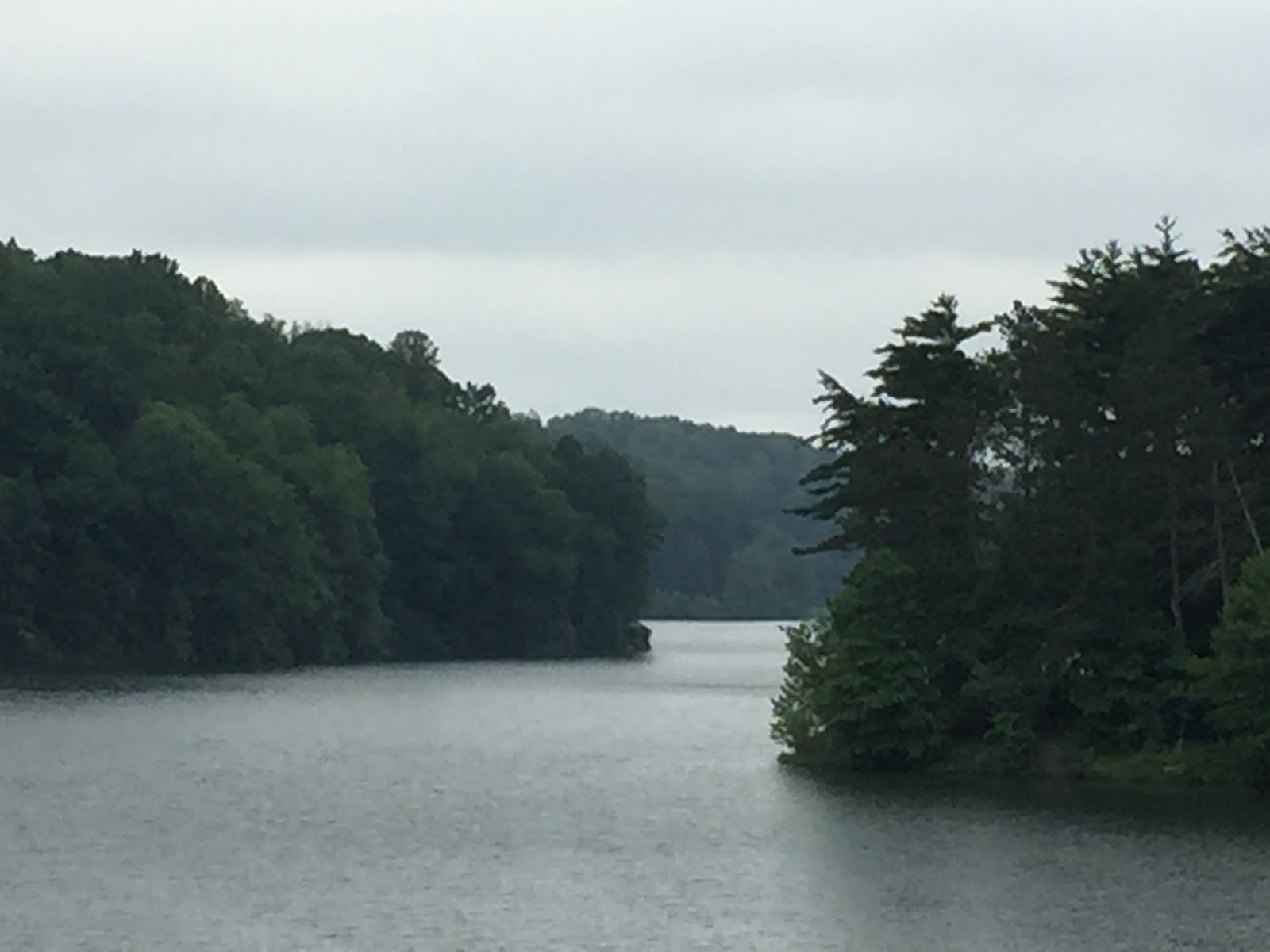 Kayaking Across Ohio Clendening Lake Wisteria Wisteria
