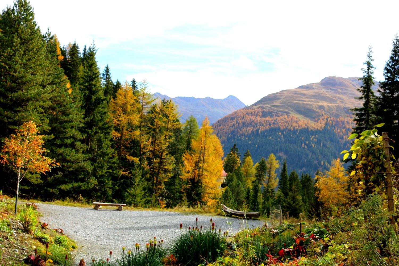 Schweiz, Berge, Seen, Herbst, Davos