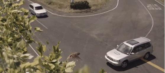 http://www.lefigaro.fr/actualite-france/2014/01/10/01016-20140110ARTFIG00496-securite-routiere-le-spot-choc-de-la-nouvelle-zelande-decrypte.php