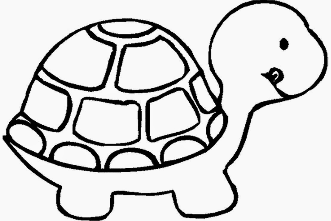 Toddler coloring activity - Turtle Coloring Sheets Free Coloring Sheet