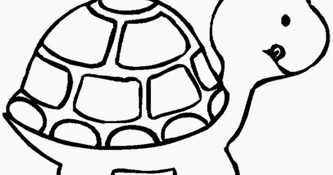 Turtle coloring sheets free coloring sheet for Turtle color
