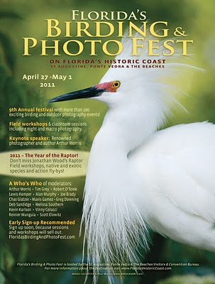 2011 Florida's Annual Birding & Photo Fest 1 FL BirdFotoFest OP 2011web St. Francis Inn St. Augustine Bed and Breakfast