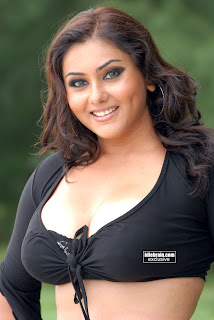 namitha hot wallpapers