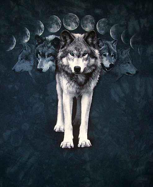 Círculos de Poder de la Diosa: Luna Llena del Lobo: Rituales ...