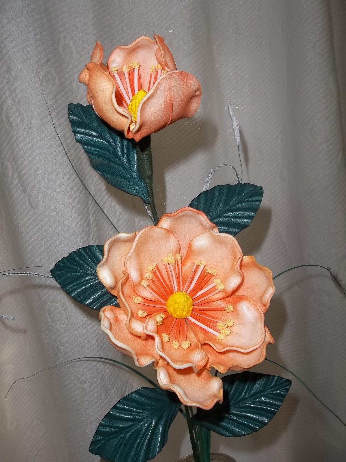 Galérias de imágenes de Flores Pedia Florespedia com - Imagenes De Flores Magnolias