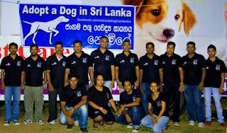 adopt a dog in Sri Lanka fourth camp in Kataragama