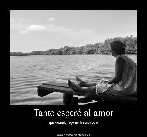 las mejores frases de amor con imagenes - Taringa!
