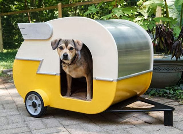 Puppy Camper