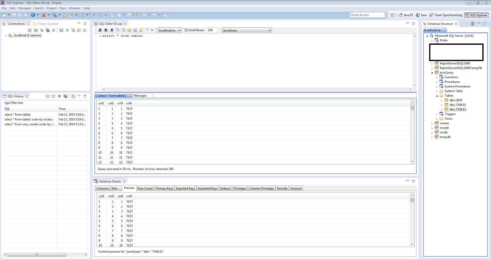 SQL Explorer