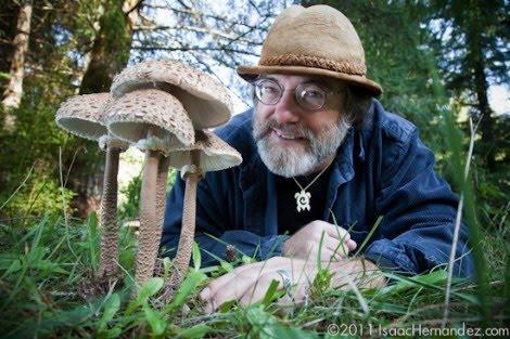 Paul Stamets : des champignons pour sauver le monde (vidéo)