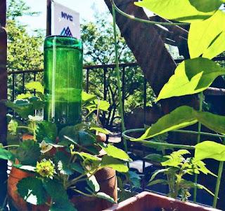 Sistema de Riego con Botellas de Vidrio Recicladas