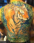 EDT Tiger