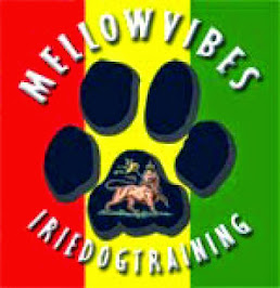 Mellow Vibes Irie Dog Training