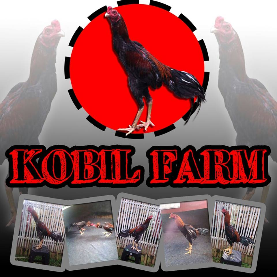 KOBIL FARM