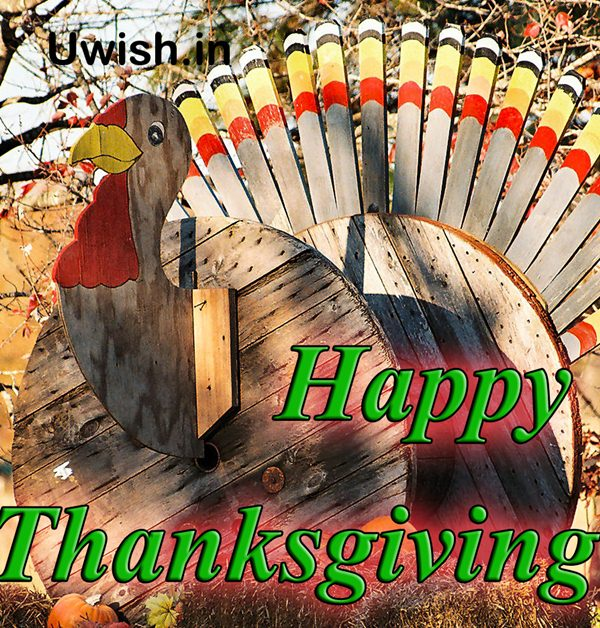 Happy Thanksgiving wishes and greetings with artificial turkey
