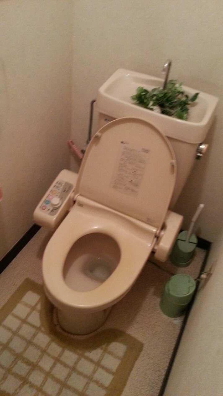 A Typical Anese Bathroom And Toilet