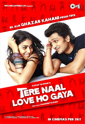 Watch Tere Naal Love Ho Gaya 2012 Hollywood Hindi Online | Tere Naal Love Ho Gaya 2012 Hindi Movie Poster
