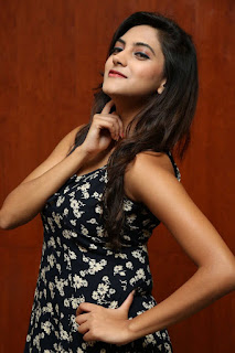 Sita Narayan Latest Pictures  (6).jpg