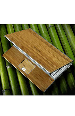 Asus Bamboo Ecobook Computer