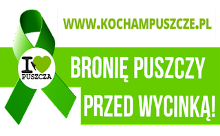 Kocham Puszcze KochamPuszcze.pl - GreenPeace Polska GreenPeace.pl - Obrońcy Puszczy