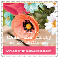 CASE-ing the Catty Challenge