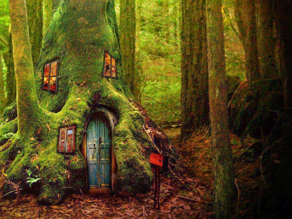 El zorro protector bosques y casas de duendes - Casitas del bosque ...