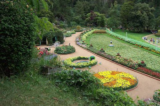 Ooty (Best Honeymoon Destinations In India) 6