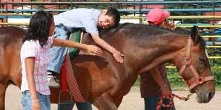 Terapia psicológica con caballos en Cantabria