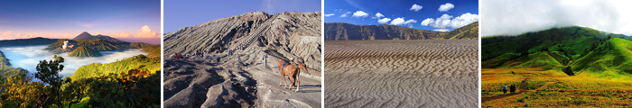 bromo midnight, paket wisata bromo midnight, tour bromo midnight, travel bromo midnight