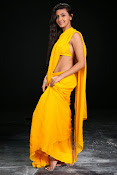 Neelam Upadhyay photos in Yellow saree from Action-thumbnail-12