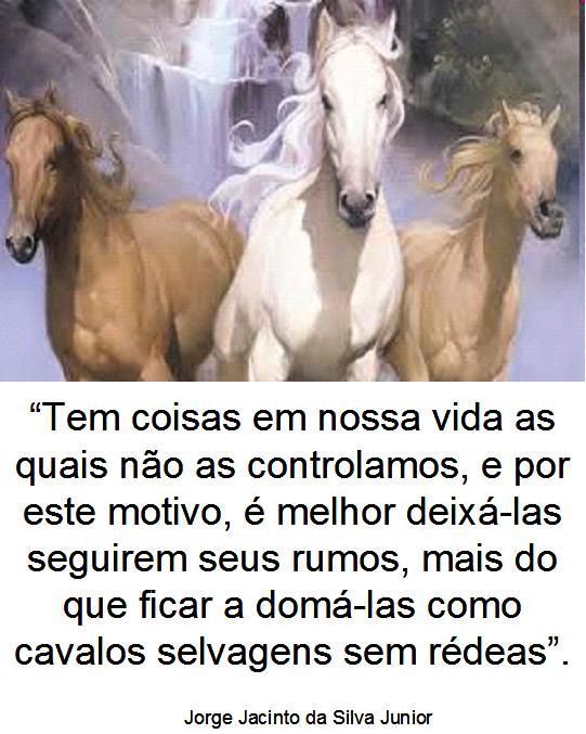 Cavalos Perfeitos