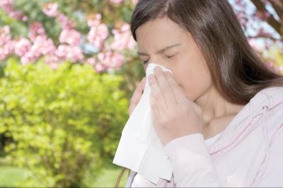 prirodni lekovi za alergiju