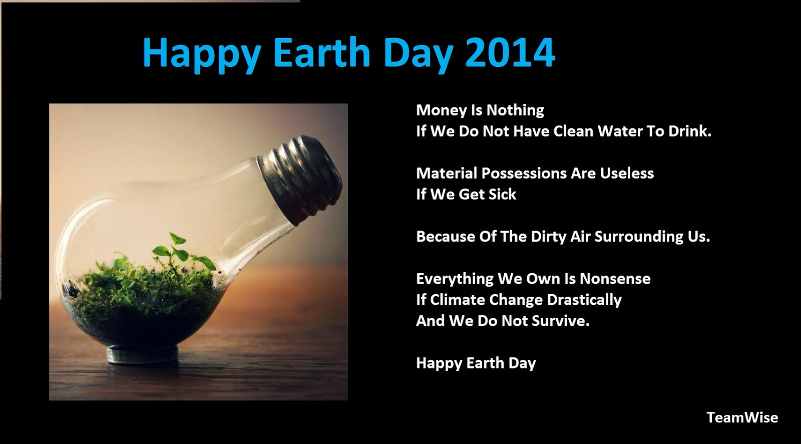 TeamWise- Happy Earth Day