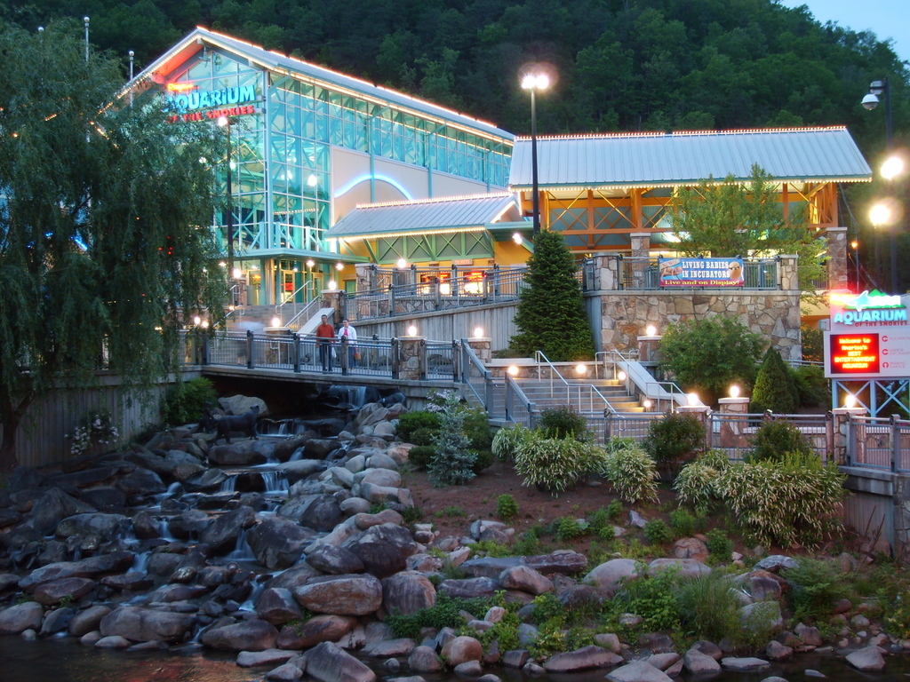 Aquarium Tennessee And Gatlinburg Tennessee On Pinterest