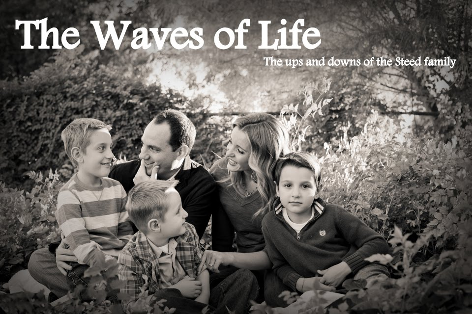 The Waves of Life
